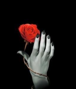 Lo Scarabeo Rose Hand, Anteckningsbok