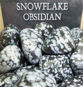 Lo Scarabeo Snöflingeobsidian - Snowflake Obsidian