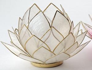 Regnbågsvävar Stor lotusblomma för värmeljus, natur