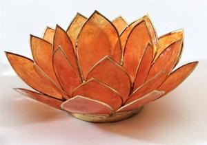 Regnbågsvävar Lotusblomma för värmeljus, orange
