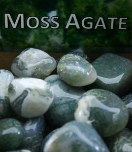 Regnbågsvävar Mossagat - Moss Agate